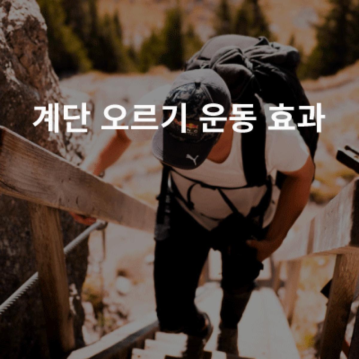 계단 오르기 운동
